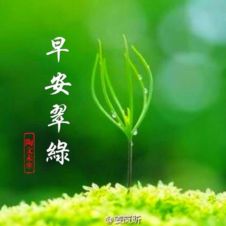生命的翠綠,因為有風有水。